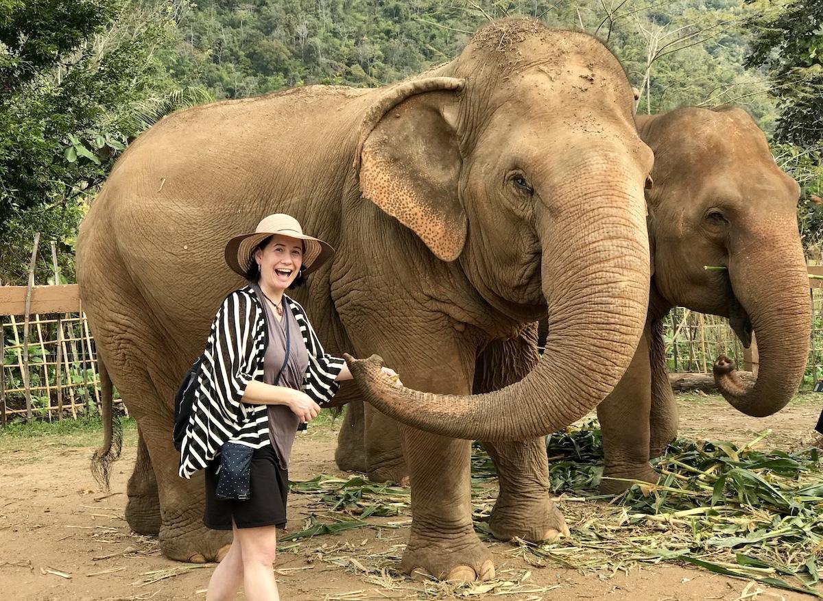 Goofy grin feeding the Elephant