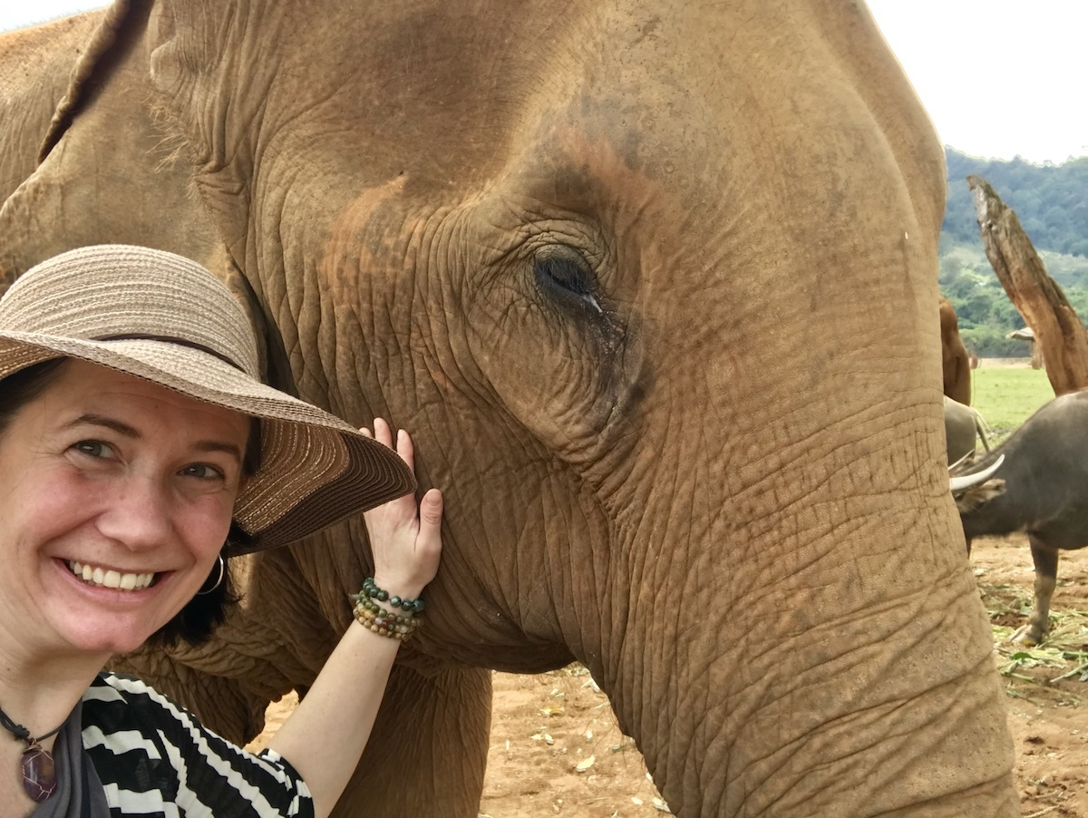 Selfie with a 100yr old Elephant? Why not?