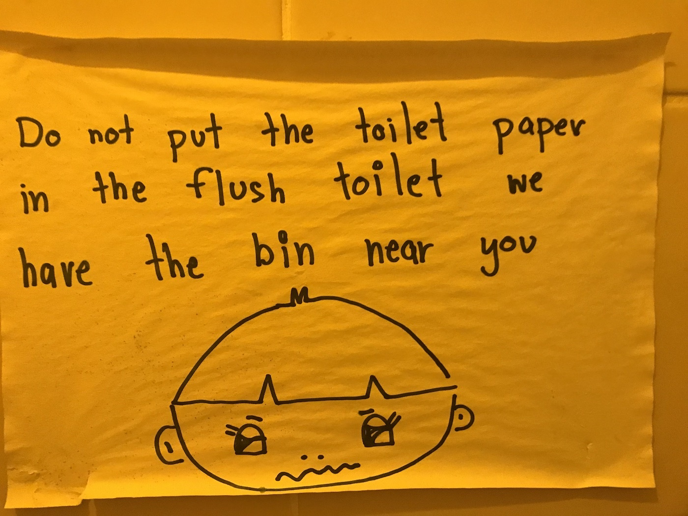 Sign saying to not flush tissue in the toilet